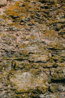 An old medieval stone wall, grass and moss on it. wallpaper, natural background, copy space, soft focus.