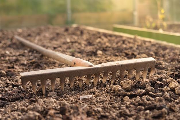 Old metal rake on ground in the garden close-up. gardening tool.