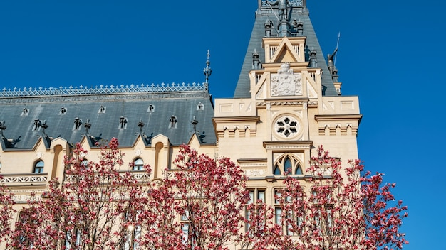 Old palace made in classic european style. trees with pink flowers on the foreground