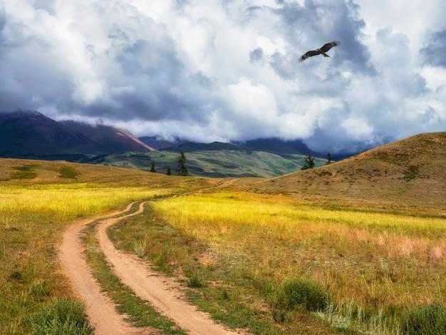 山を通る古い道。トレッキング登山道。高地の草の間の石の歩道のある明るい雰囲気のミニマリストの高山の風景。上り坂の経路。山腹を上る。