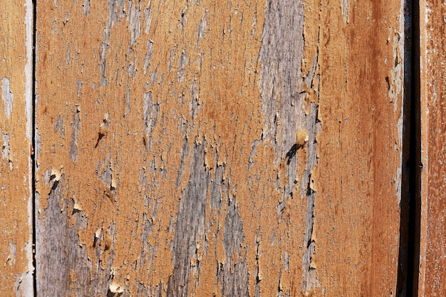 Old plank of texture with background details.
