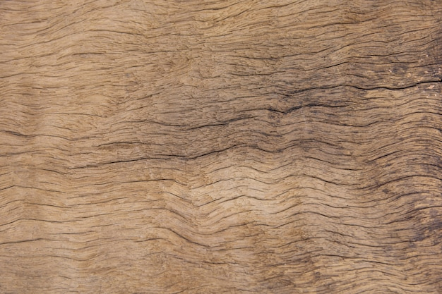 Old plank wood texture background. wood surface eroded as background