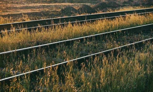 草原の古い鉄道レール