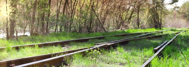 緑の草が生い茂った古い線路