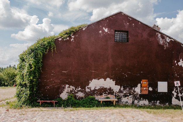 Old, red building in ivy