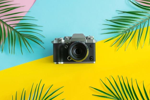 古いレトロなカメラとヤシの葉の色の背景に。最小限のフラットレイアウトスタイルの構成を入札します。夏のコンセプトです。