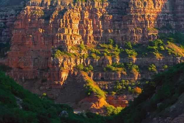 협곡의 오래된 암석층