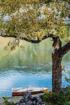 川岸のそばの木の下に係留された古い手漕ぎボート。ロシア、アルタイ、チュリシュマン川