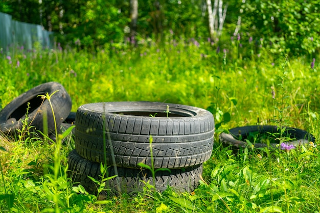 Старые резиновые автомобильные шины в зеленом естественном лесу. уничтожение экологии.