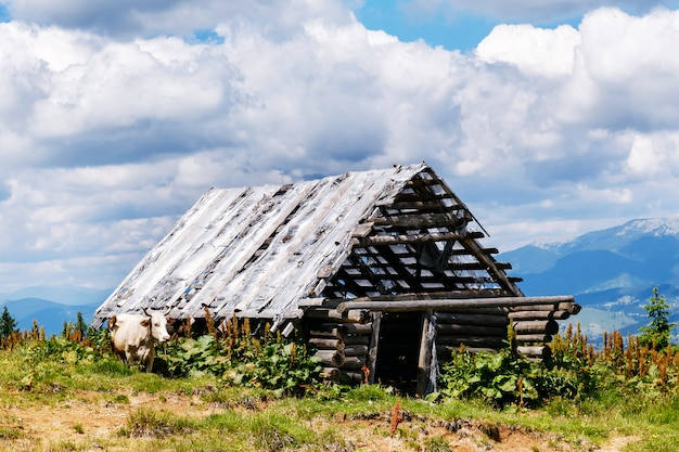 Old ruined wooden barn in the mountains
