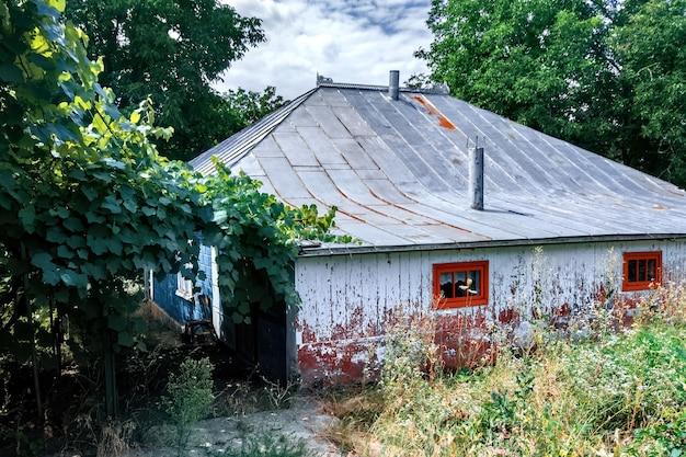Старый сельский дом с частью покрытия дикого винограда во дворе