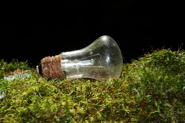Old, rusted incandescent lamp