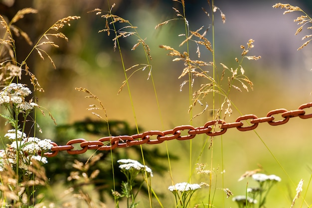 Old rusted iron chain