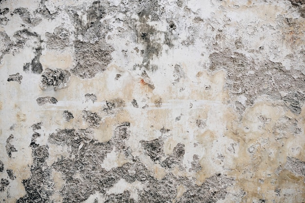 An old rustic peeled painted wall