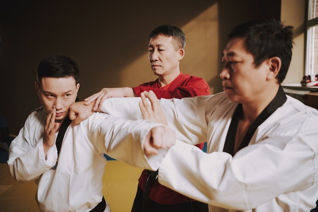Old sensei teaching two martial arts students how to fight.