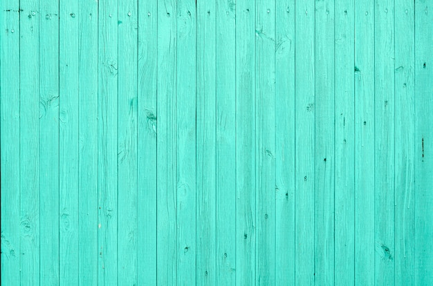 Old shabby wood texture background green