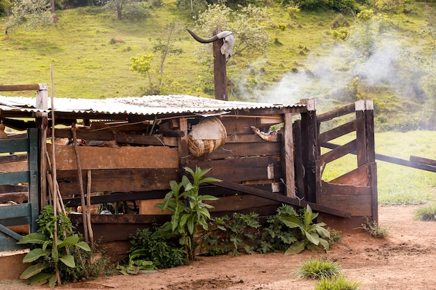 Old shed of stuff and tools in use in the little farm, in sao paulo, brazil