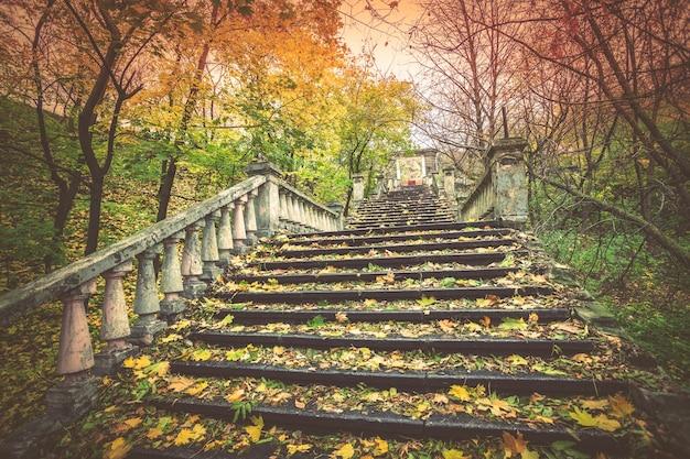 Старая лестница, покрытая опавшими листьями в парке осенью