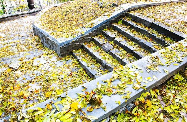 秋の森の古い階段。