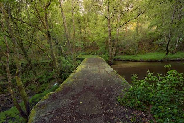 Старый каменный мост через реку арентейро, в регионе галисия, испания.