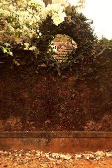 곱슬 식물이 있는 오래된 돌 울타리. 인도 카르나타카 고카르나