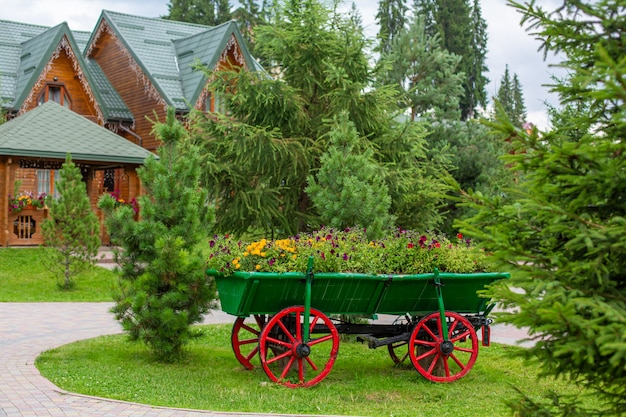 Old style cart with green bush for outdoor backyard decoration.