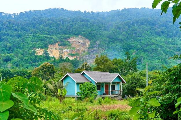 Старый милый дом в джунглях. деревня в тропических джунглях.