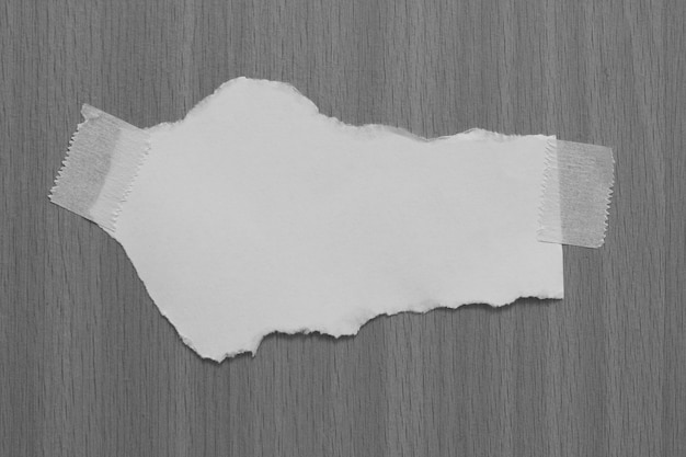 Old torn paper on gray background with copy space for text
