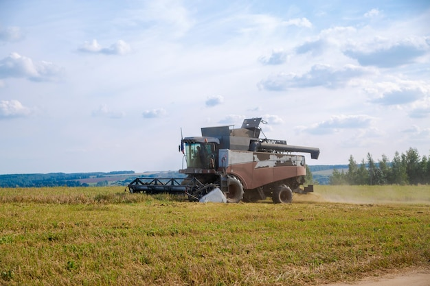 Old tracktor plows the field harvester harvests wheat from a sown agricultural field