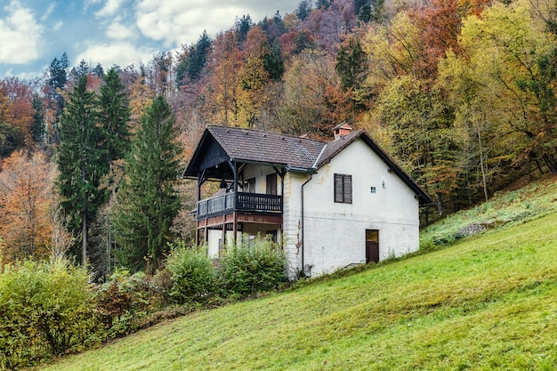 Old traditional house with a view in slovenian alps surrounded by high colorful trees