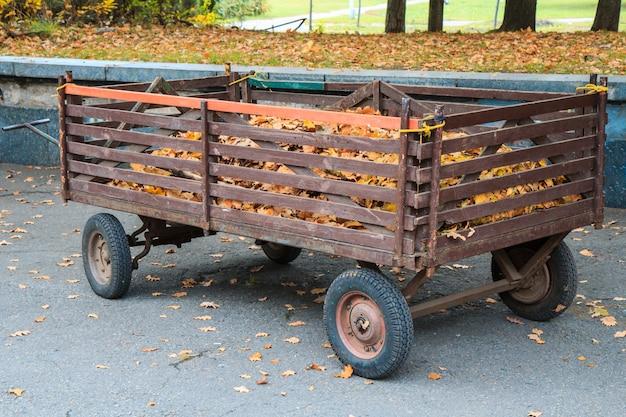 Старый трейлер с мертвыми листьями в городском парке в осенний день