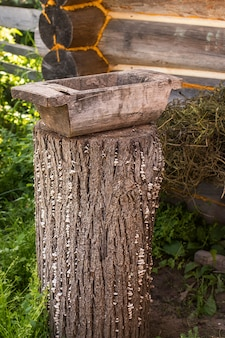 Old trough in the  garden.