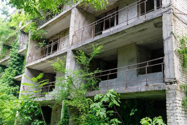 식물이 무성한 오래된 미완성 석조 건물. 고품질 사진