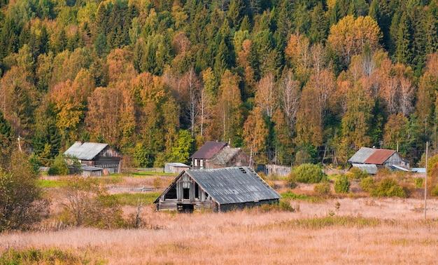 Vepsky 숲, 레닌 그라드 지역 러시아의 가을 숲 근처 목조 주택이있는 오래된 마을