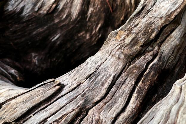 Old vintage antique wood