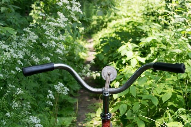 키 큰 잔디, 자전거 활동 개념 여름 야생 숲에서 오래 된 빈티지 자전거. 자연 도로 또는 정글 트레일에서 자전거 타는 사람의 눈에서보기