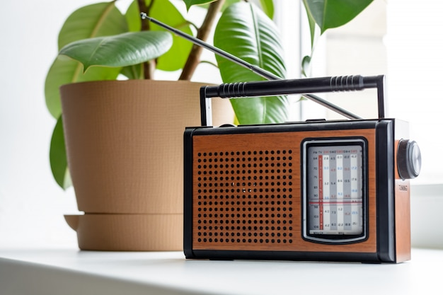 Old vintage radio with brown pot of the ficus tree on a white window sill in the room