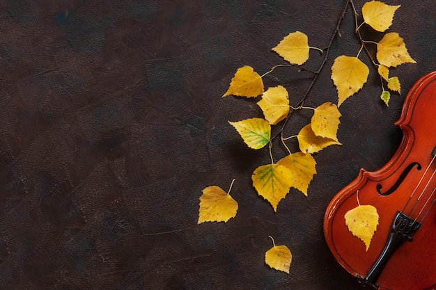 Old violin and birch branch with yellow autumn leaves.