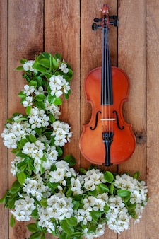 Old violin and blossoming apple tree branches.