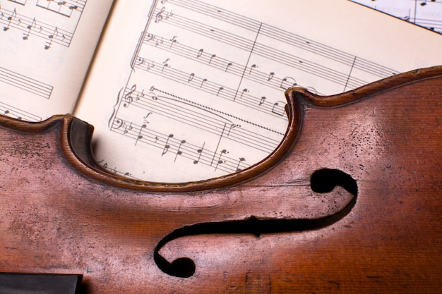 Old violin on the musical notes