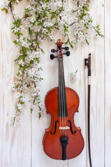 Old violin with fiddlestick and blossoming cherry tree branches