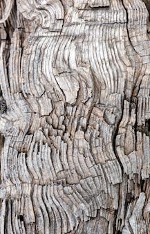 古い風化した木