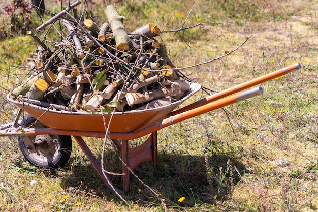 An old wheelbarrow full of firewood ready for winter