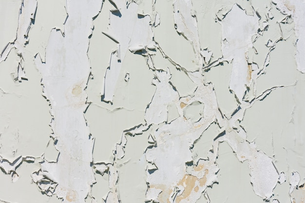 Old white paint exfoliates with cracked layers on the wall of concrete