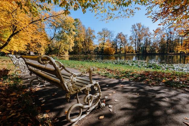 Старая белая деревянная скамейка в осеннем парке