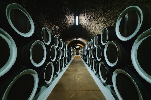 Старые винные дубовые бочки в винном погребе, хранящиеся на винодельне