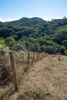森の近くの丘を介して古い有線フェンス