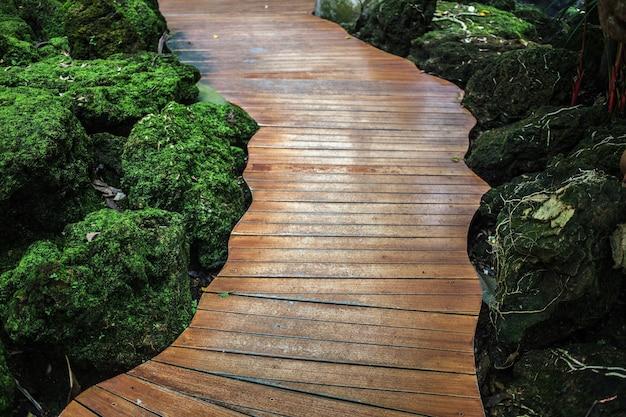 Old wood bridge in nature park