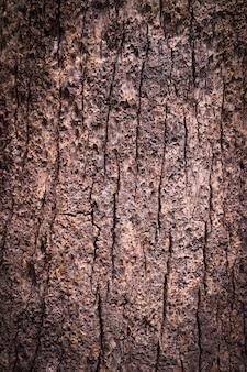 오래 된 나무 금이 질감 원활한 나무 껍질 질감 웹 페이지 채우기에 대 한 끝 없는 나무 배경