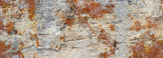 Old wood texture, ancient wooden background with a vintage structure banner